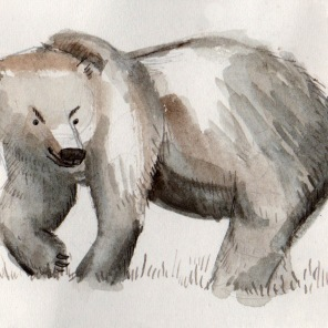 bear sketch 2: scheming bear