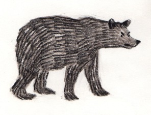 bear sketch 5: grumpy bear