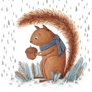 Squirrel in Rain